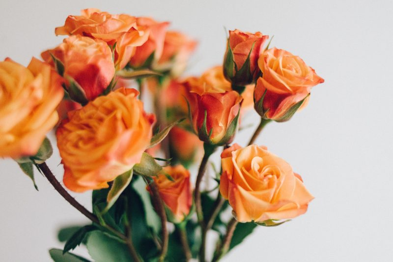Spring cleaning can help pleasant smells come to the fore. As humans we associate the smell of fresh flowers with good things.